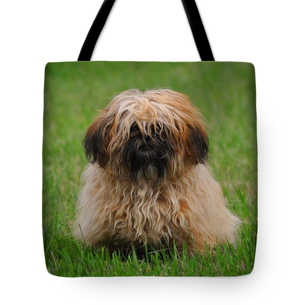 Tote Bag featuring the photograph Charlie by Greg Norrell