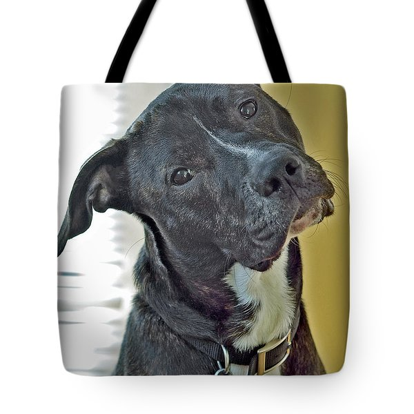Tote Bag featuring the photograph Charlie by Lisa Phillips