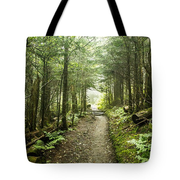 Tote Bag featuring the photograph Charlies Bunion Bald Trail by Debbie Green