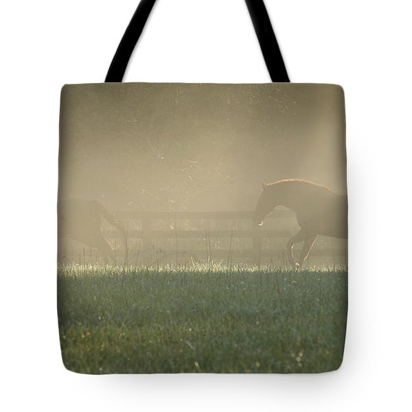 Tote Bag featuring the photograph Chasing A Phantom by Carol Lynn Coronios