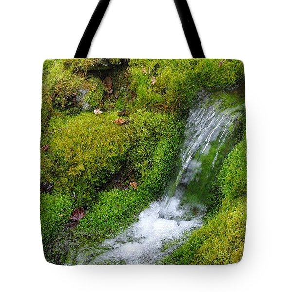 Tote Bag featuring the photograph Chasing Waterfalls by Marilyn Wilson