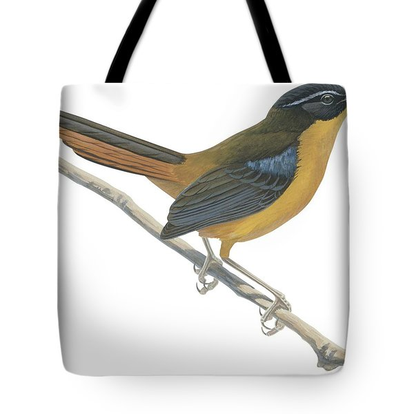 Chat Thrush  Tote Bag