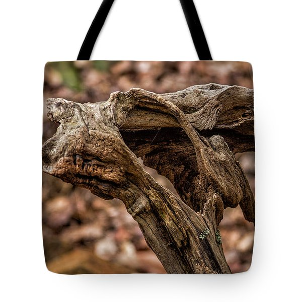Chattahoochee National Forest Tote Bag