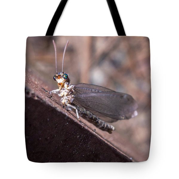 Chauliodes Tote Bag