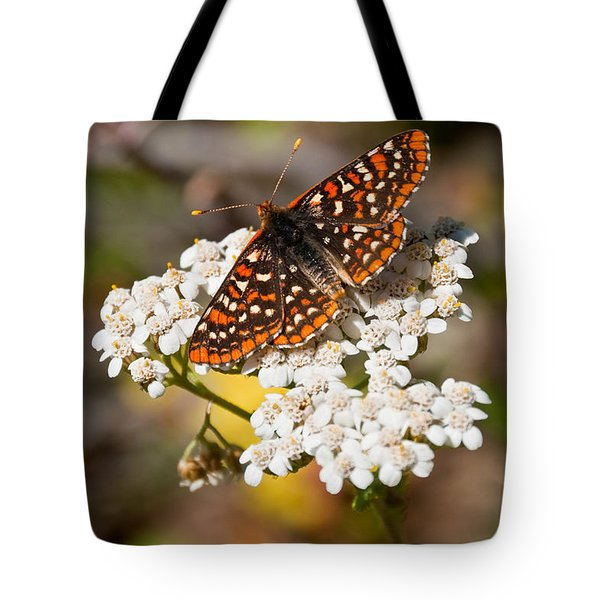 Tote Bag featuring the photograph Checkerspot Butterfly On A Yarrow Blossom by Jeff Goulden