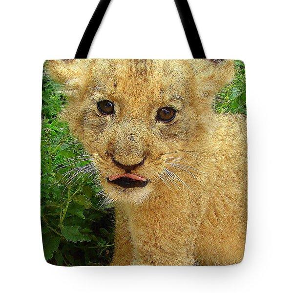Cheeky Cub Tote Bag by Ramona Johnston