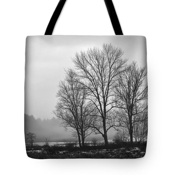 Cheese House Road Trees Tote Bag