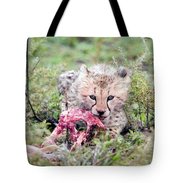 Cheetah Cub Acinonyx Jubatus Eating Tote Bag
