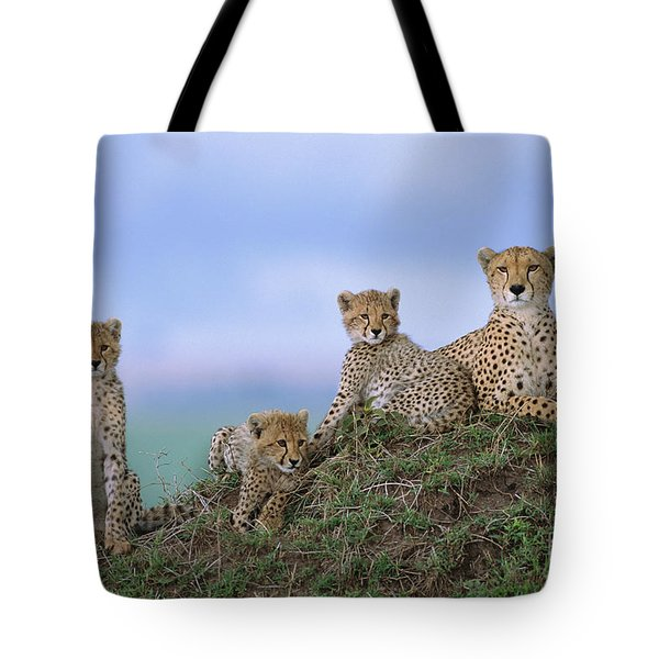 Cheetah Mother And Cubs Masai Mara Tote Bag by Yva Momatiuk John Eastcott