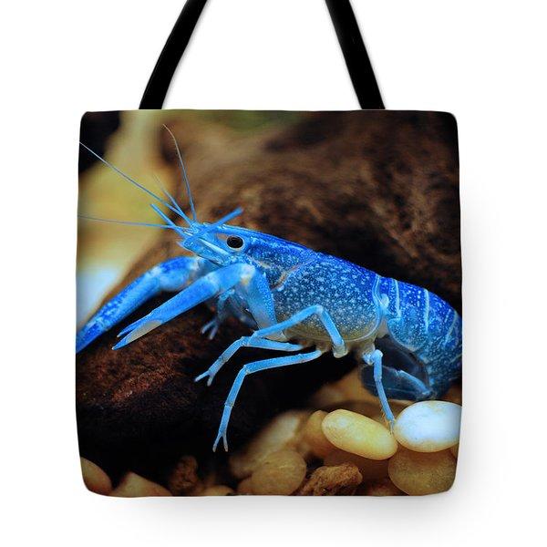 Cherax Quadricarinatus Tote Bag