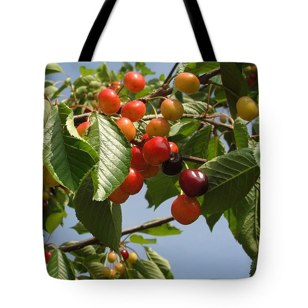 Tote Bag featuring the photograph There's Always 'that One' by Natalie Ortiz