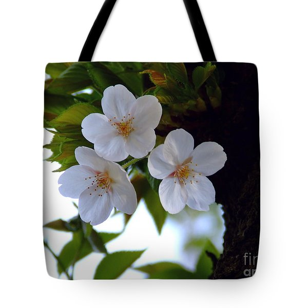 Tote Bag featuring the photograph Cherry Blossom by Andrea Anderegg