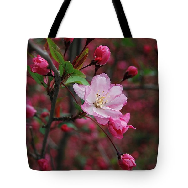 Tote Bag featuring the photograph Cherry Blossom by Eva Kaufman