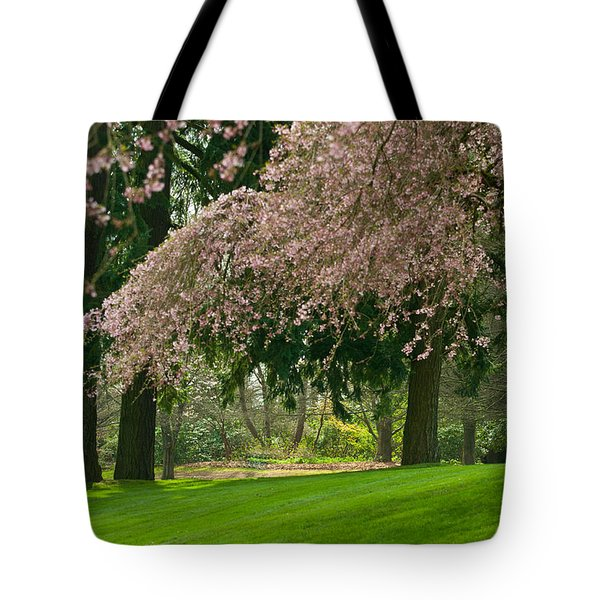 Tote Bag featuring the photograph Cherry Blossom by Sabine Edrissi
