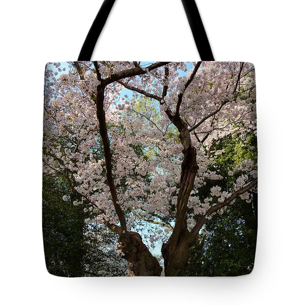 Cherry Blossoms 2013 - 056 Tote Bag