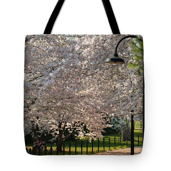 Cherry Blossoms 2013 - 060 Tote Bag