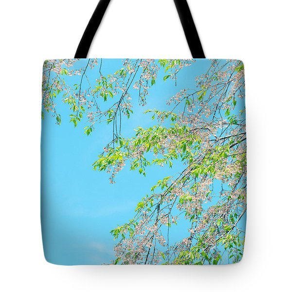 Cherry Blossoms Falling Tote Bag by Rachel Mirror