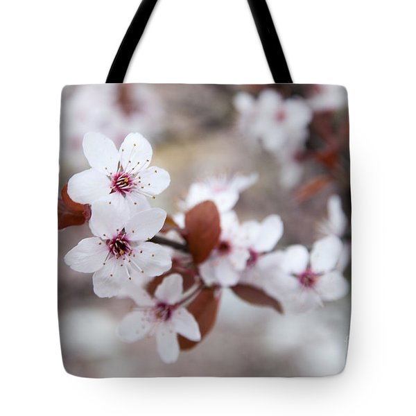 Cherry Blossoms Tote Bag by Hannes Cmarits