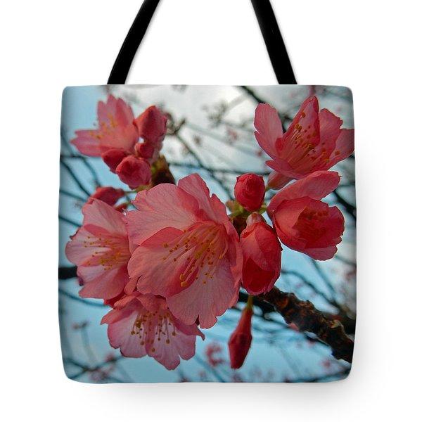 Cherry Blossoms Tote Bag by Pamela Walton