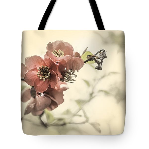 Tote Bag featuring the photograph Cherry Blossoms by Peter v Quenter