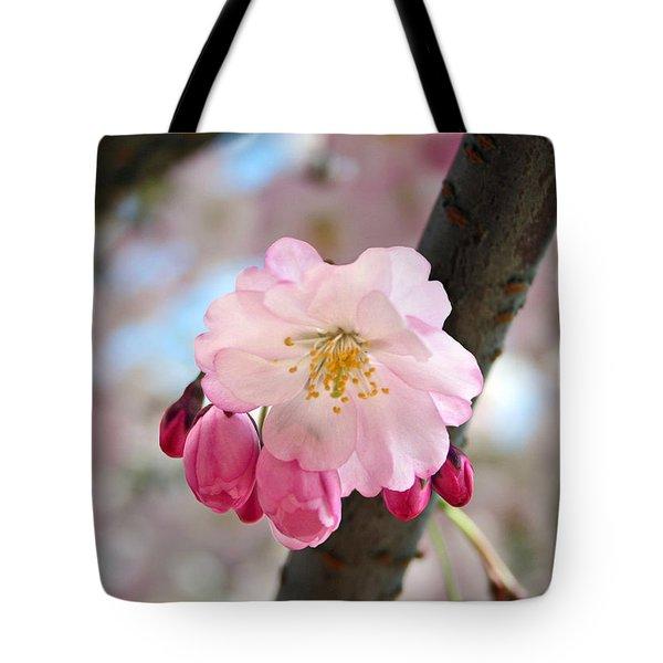 Cherry Tree Blossom Series 801 Tote Bag