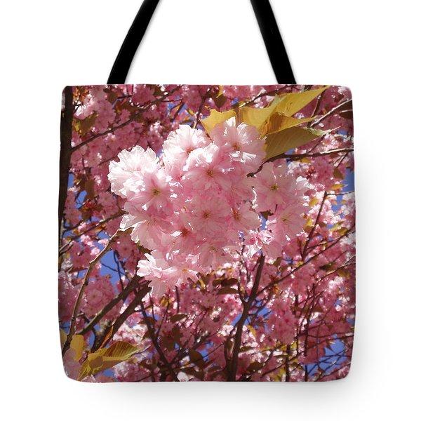 Cherry Trees Blossom Tote Bag