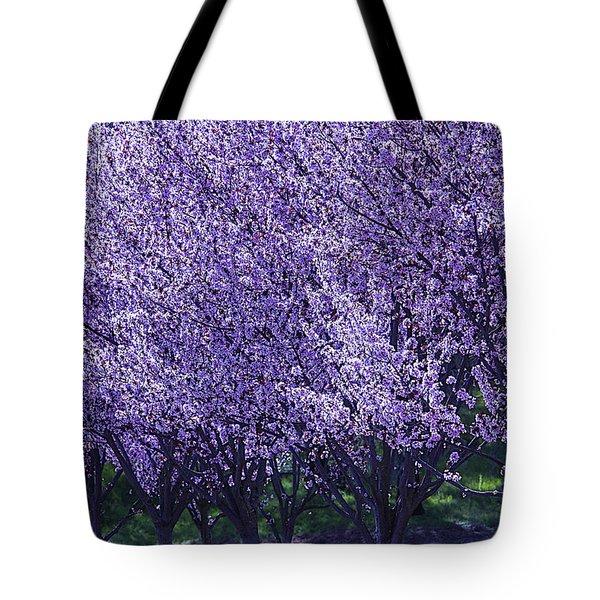 Cherry's In Bloom Tote Bag