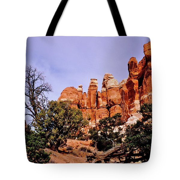 Chesler Park Pinnacles Tote Bag by Ed  Riche