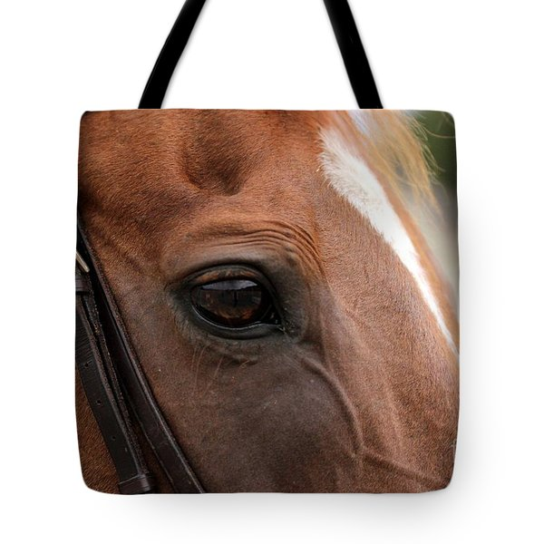 Chestnut Horse Eye Tote Bag