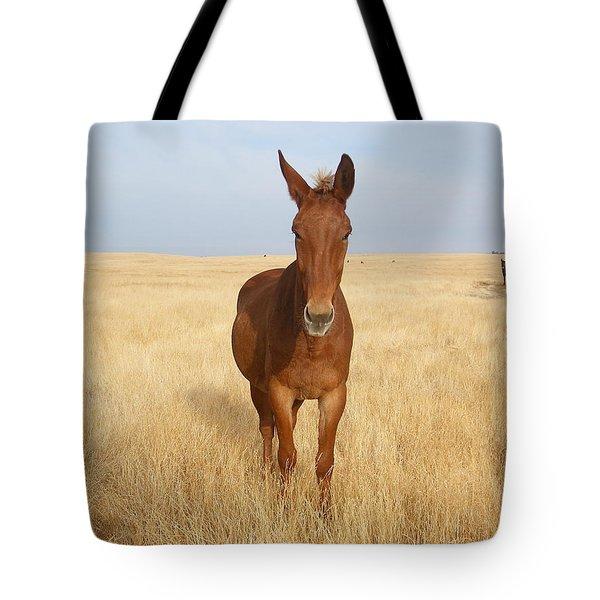 Chestnut Mule In Gold Tote Bag