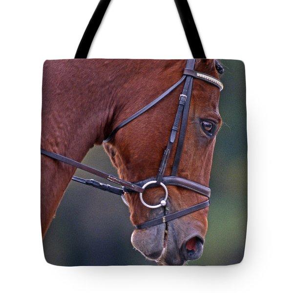 Chestnut Tote Bag by Skip Willits