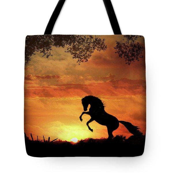 Chestnut Sunset Tote Bag