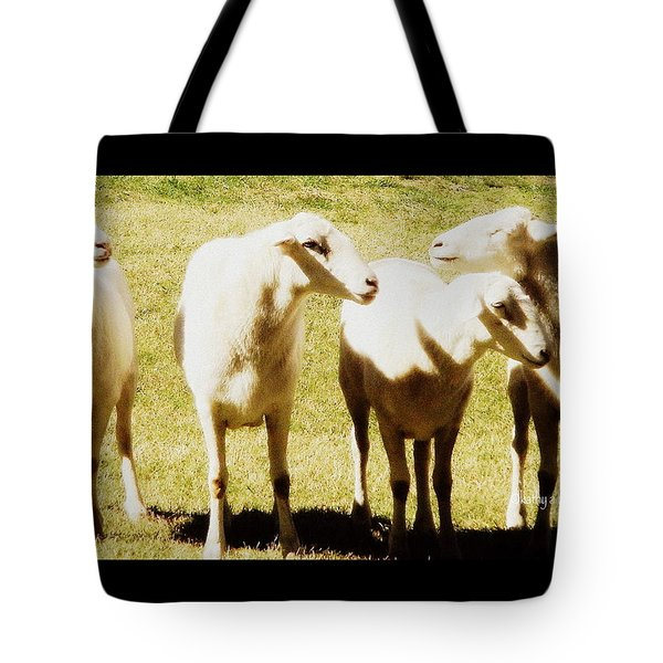 Tote Bag featuring the photograph Cheviot Sheep by Kathy Barney