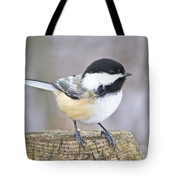 Chickadee On A Used To Be Tree Tote Bag by Heather King