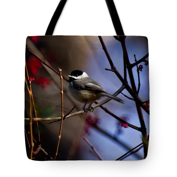 Chickadee Tote Bag by Robert L Jackson