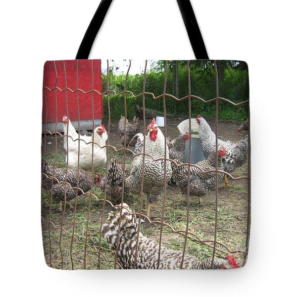 Chicken Coop. Tote Bag by Francine Heykoop