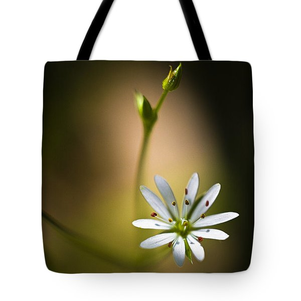 Chickweed Blossom And Bud Tote Bag
