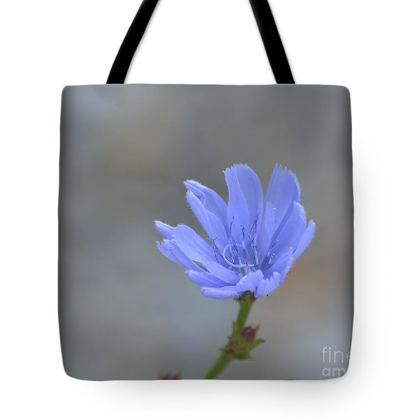 Chicory Tote Bag by Randy Bodkins