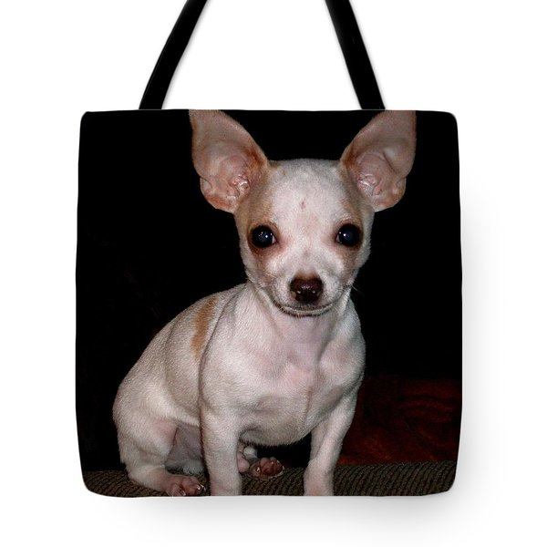 Tote Bag featuring the photograph Chihuahua Puppy by Maria Urso