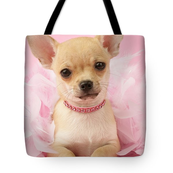 Chihuahua With Feather Boa Tote Bag by Greg Cuddiford