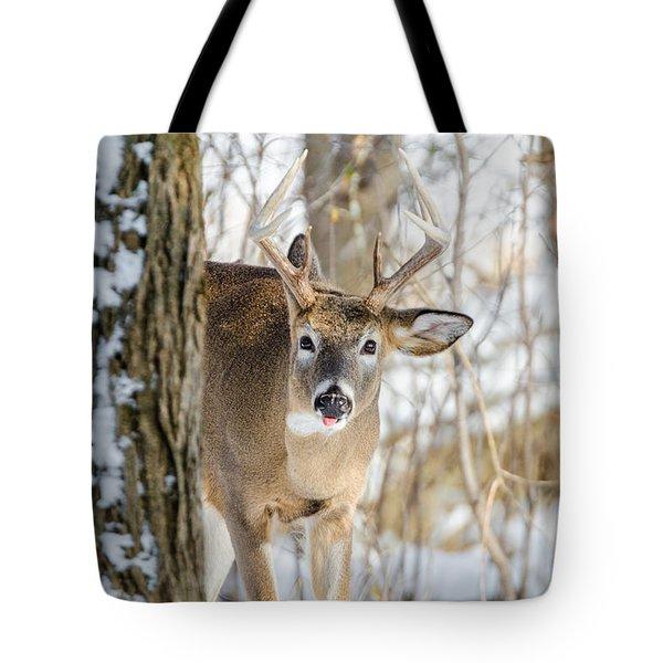 Childish Buck Tote Bag