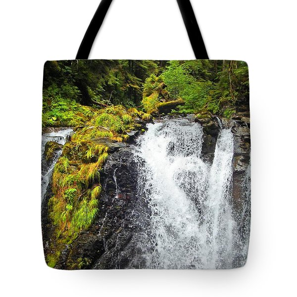 Chilkoot Falls Tote Bag