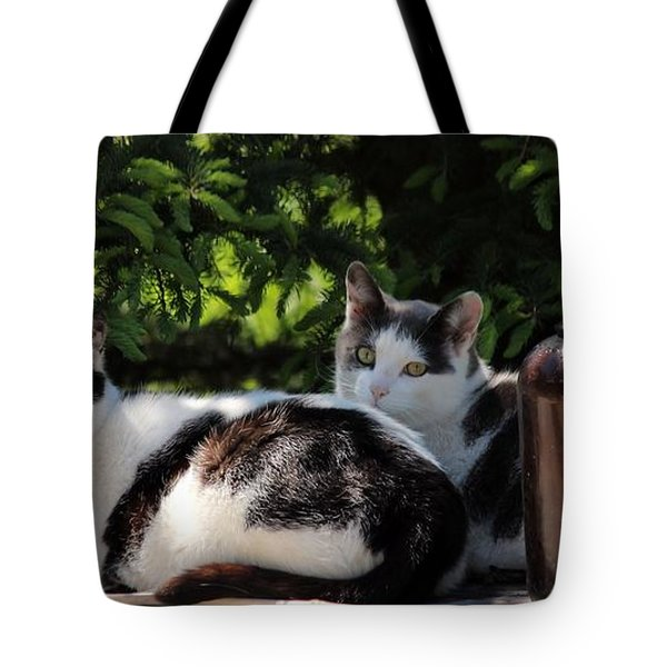 Chillin' Brothers Tote Bag
