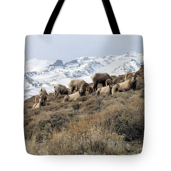 Chimney Rock Rams Tote Bag