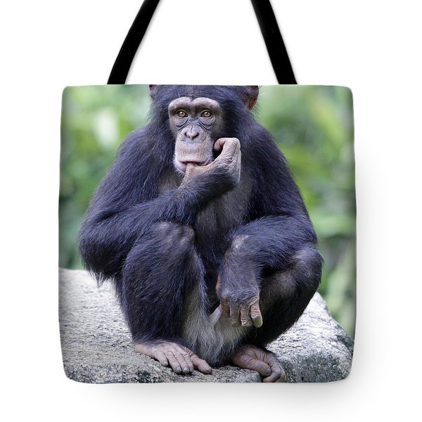 Chimp Sucking His Thumb Tote Bag by Shoal Hollingsworth