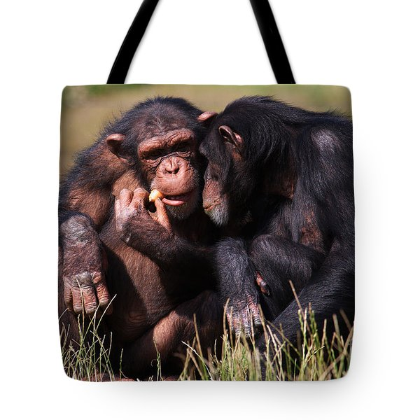 Chimpanzees Eating A Carrot Tote Bag by Nick  Biemans