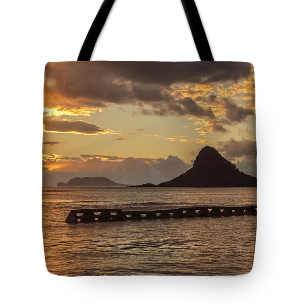 Chinaman's Hat 5 Tote Bag by Leigh Anne Meeks
