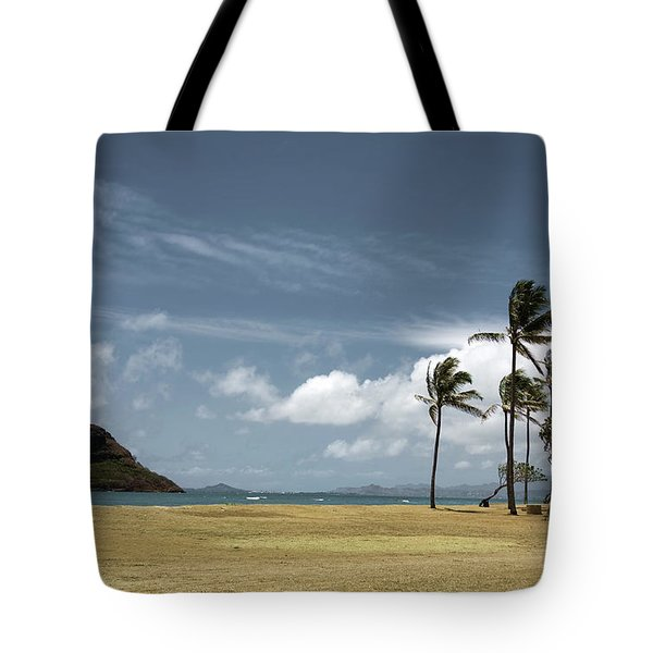 Chinaman's Hat Island Tote Bag by Joanna Madloch