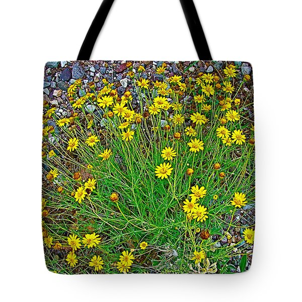 Chinchweed In Big Bend National Park-texas Tote Bag
