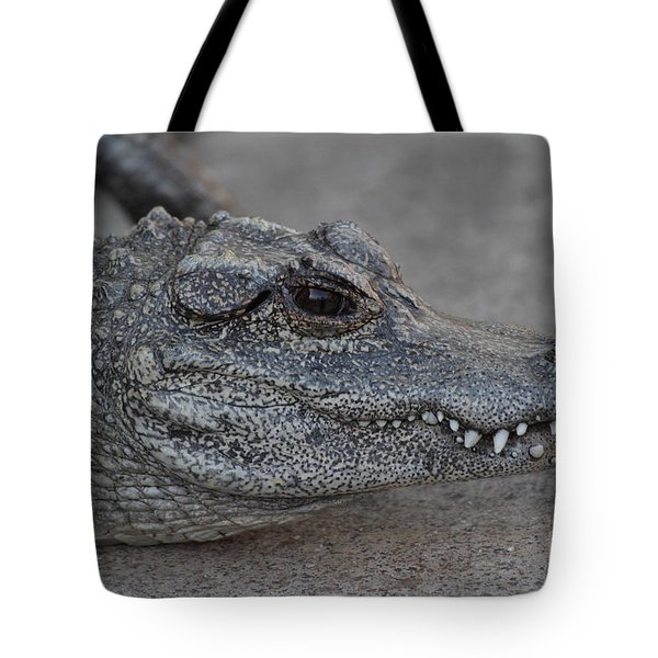 Chinese Alligator Tote Bag by Ruth Jolly